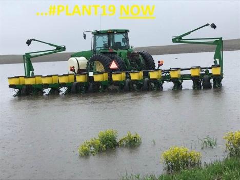 #Plant19 Now
